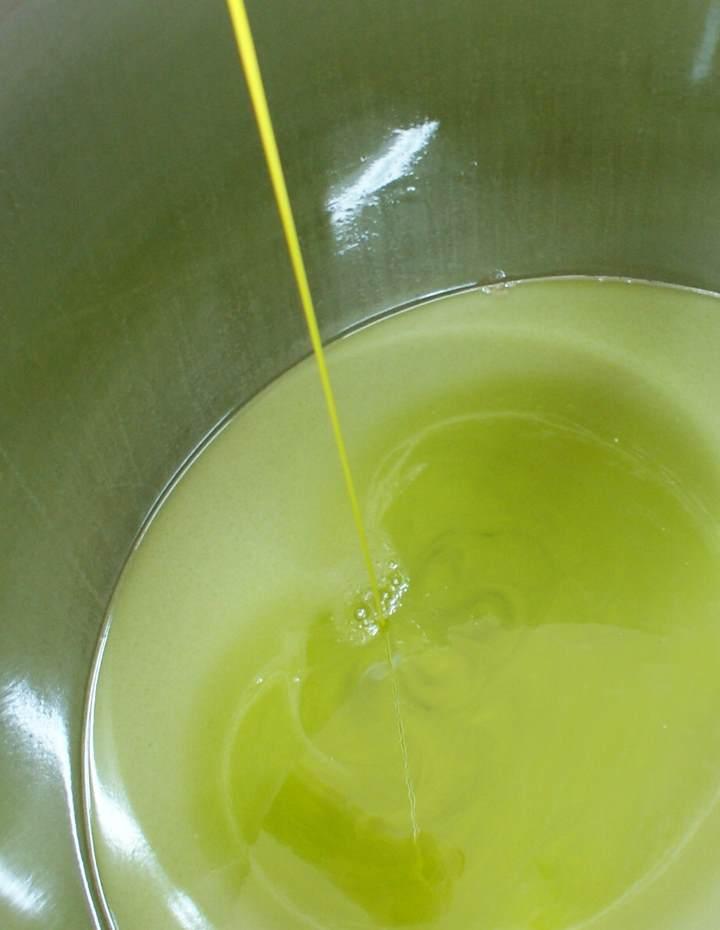 produzione olio extravergine melcarne
